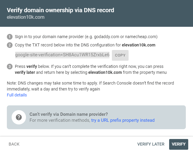 Domain ownership verification steps shown in a gray and white box
